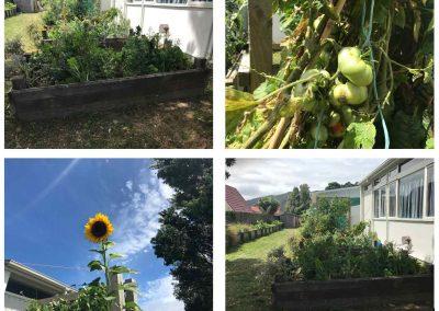 Randwick School – cultivating eco warriors