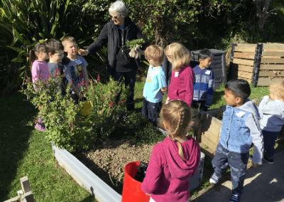 Greenacres School – Garden to Table